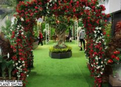 The Flower and Plant Show