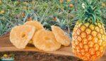 Ananas meyvesi kurusu